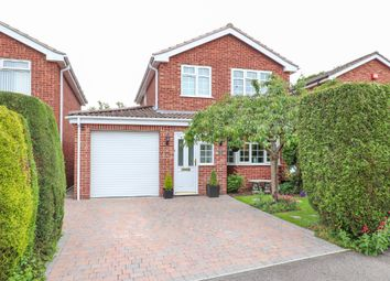 Thumbnail 4 bed detached house for sale in Pine Street, Hollingwood, Chesterfield