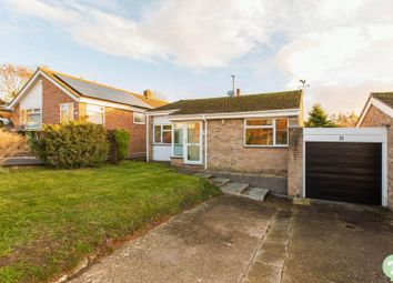 Thumbnail 3 bed detached bungalow to rent in Birch Road, Garsington, Oxford
