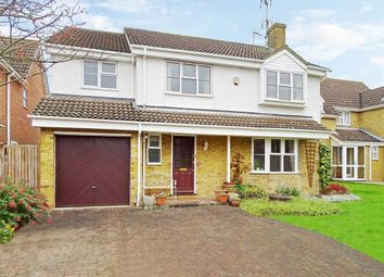Thumbnail 4 bed detached house for sale in Little Nell, Chelmsford, Essex