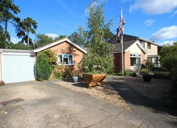 Thumbnail 3 bedroom bungalow for sale in North Lawn, Rushmere, Ipswich