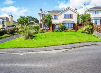 Thumbnail 4 bed detached house for sale in Woodbrook West, Londonderry