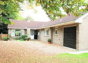 Thumbnail 3 bed detached bungalow to rent in Wellington Road, Taunton