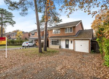 Thumbnail 3 bed detached house for sale in Oakwood Road, Windlesham, Surrey