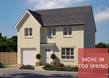 """Thumbnail 4 bed detached house for sale in """"Invercauld"""" at South Larch Road, Dunfermline"""