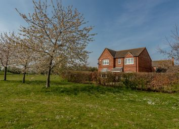 Thumbnail 4 bedroom detached house for sale in Constantine Crescent, Scarborough