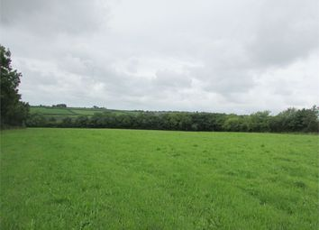Thumbnail Land for sale in 8.79 Acres Or Thereabouts, Llanycefn, Clynderwen, Pembrokeshire