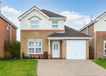Thumbnail 3 bed detached house for sale in Montgomery Avenue, Shefford, Beds