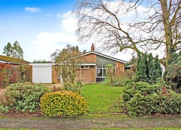 Thumbnail 3 bed detached bungalow for sale in Brecon Road, Brooke, Norwich, Norfolk