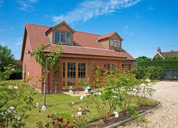 Thumbnail 4 bed detached house for sale in Main Road, Rookley, Ventnor