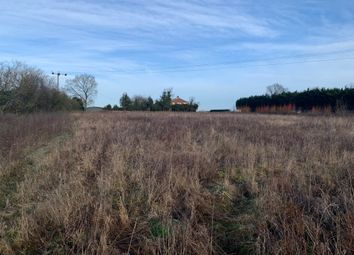 Thumbnail Equestrian property for sale in London Road, Weston, Beccles