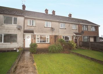 Thumbnail 2 bedroom terraced house for sale in Drumahoe Gardens, Millbrook, Larne, County Antrim