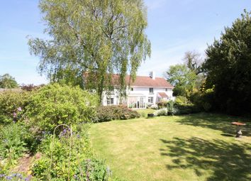 Thumbnail 4 bed detached house for sale in Payhembury, Honiton