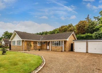 Thumbnail 4 bed detached bungalow for sale in Welcomes Road, Kenley