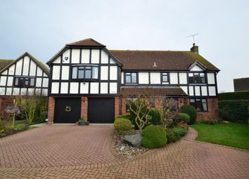 Thumbnail 5 bed detached house for sale in Hatfield Peverel, Chelmsford, Essex