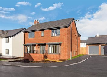 "Thumbnail 4 bed detached house for sale in ""The Dunstable"" at Waddeton Close, Paignton"