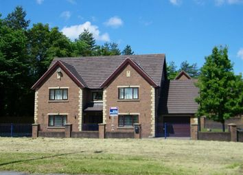 Thumbnail 5 bedroom detached house for sale in Clos Bryngwili, Hendy, Pontarddulais, Swansea