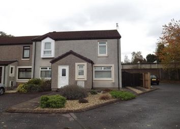 Thumbnail 2 bed property to rent in Rosebank Avenue, Falkirk