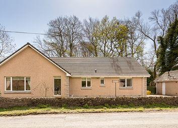 Thumbnail 4 bed bungalow for sale in Clocksbriggs, Forfar, Angus