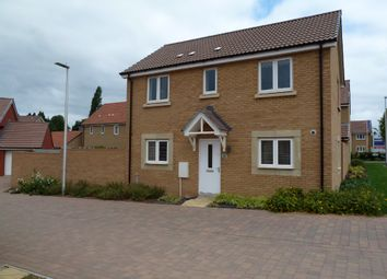 Thumbnail 3 bed detached house to rent in Nile Road, Exeter