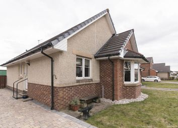 Thumbnail 3 bed detached bungalow for sale in Richard Quinn Street, Cowie, Stirling
