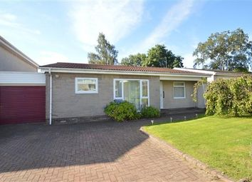 Thumbnail 3 bed property for sale in Maple Avenue, Milton Of Campsie