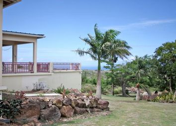 Thumbnail 3 bed villa for sale in Morning Star, Nevis, Saint George Gingerland