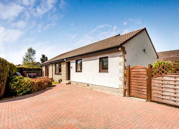 Thumbnail 3 bed bungalow for sale in Taybank Place, Errol, Perth