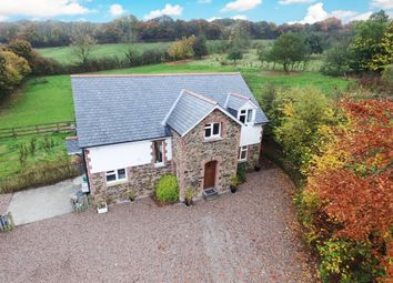 Thumbnail 4 bed detached house for sale in High View, East Street, Sheepwash, Beaworthy