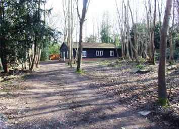 Thumbnail Detached bungalow for sale in Horsham Road, Beare Green, Dorking, Surrey
