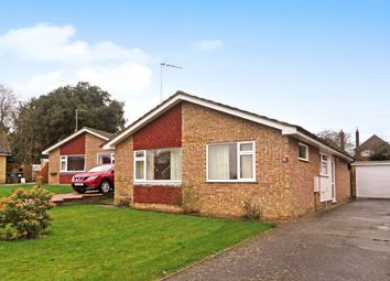 Thumbnail 2 bed detached bungalow for sale in Old Orchard Close, Halesworth