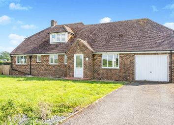 Thumbnail 4 bed detached house to rent in Park Lane, Aldingbourne, Chichester