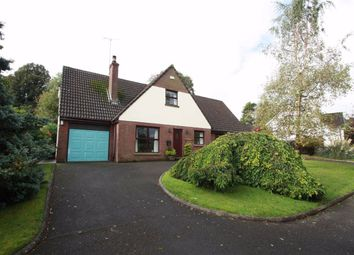 Thumbnail 4 bed detached house for sale in The Beeches, Ballynahinch, Down