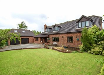 Thumbnail 5 bed detached house for sale in Berriman's Lane, Kilham, Driffield