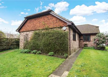 Thumbnail 3 bed detached bungalow for sale in Waterperry Lane, Chobham, Woking, Surrey