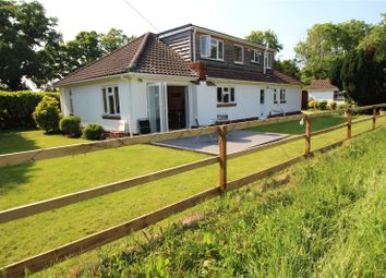 Thumbnail 4 bed detached house for sale in Winchester Road, Waltham Chase, Hampshire