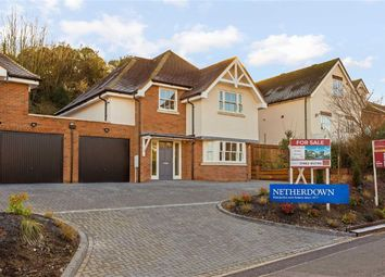 Thumbnail 3 bedroom detached house for sale in School Lane, Welwyn Village, Hertfordshire