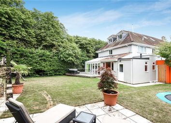 Thumbnail 5 bed semi-detached house for sale in South Court Avenue, Dorchester, Dorset