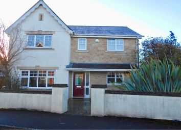 Thumbnail 4 bedroom detached house to rent in Larks Meadow, Stalbridge, Sturminster Newton