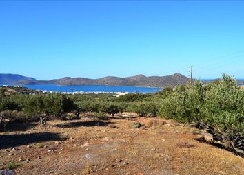 Thumbnail Land for sale in Epano Elounta, Lasithi, Gr