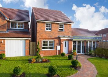 "4 bed detached house for sale in ""Chester"" at Shackleton Close, Whitby YO21"