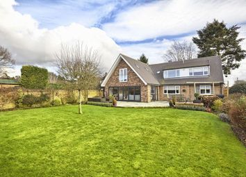 Thumbnail 5 bed property for sale in Great Amwell, Nr Ware, Herts