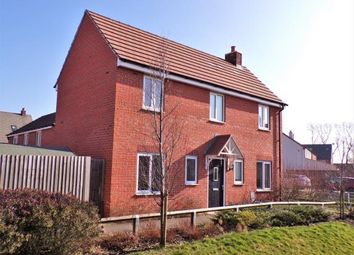 Thumbnail 4 bed detached house for sale in Sansome Drive, Hinckley, Leicester, .