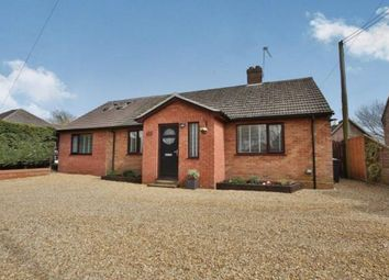Thumbnail 6 bedroom bungalow for sale in Necton, Swaffham