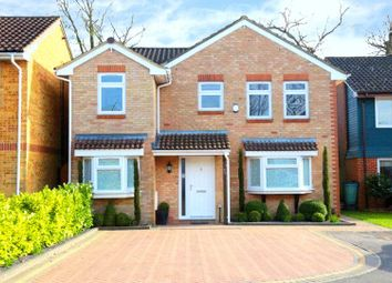 Thumbnail 4 bedroom detached house for sale in Chepstow Close, Worth, Crawley