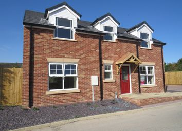 Thumbnail 3 bed detached house for sale in Wildshed Lane, Burgh Le Marsh, Skegness