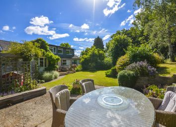 Thumbnail 4 bed detached house for sale in Ham Island, Windsor