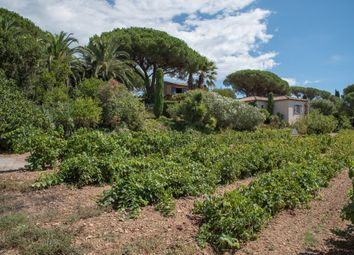 Thumbnail 6 bed property for sale in Saint Tropez, Var, France