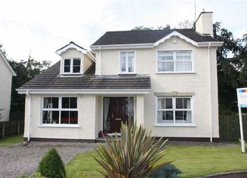 Thumbnail 4 bed detached house for sale in The Puzzle Walks Spa, Ballynahinch, Down