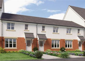 "Thumbnail 3 bed mews house for sale in ""Shepherd"" at Lenzie, Kirkintilloch, Glasgow"