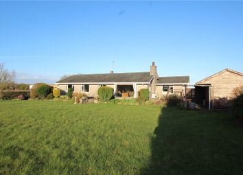 Thumbnail 4 bed detached bungalow for sale in Copper Beeches, Warehouse And Land, Foulshaw Lane, Levens, Kendal